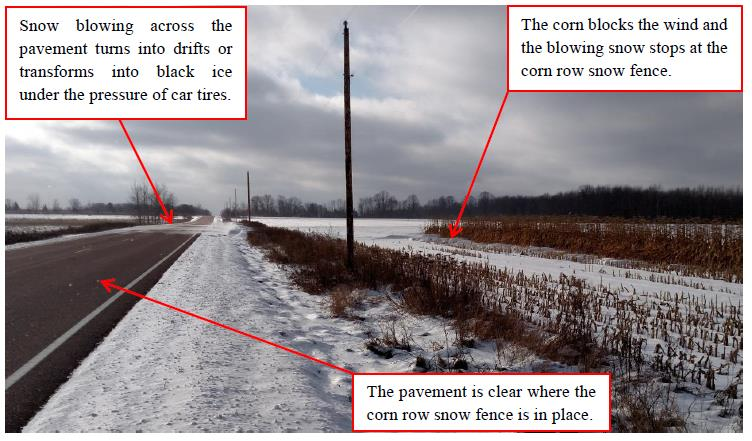 Corn Row Snow Fence explanation