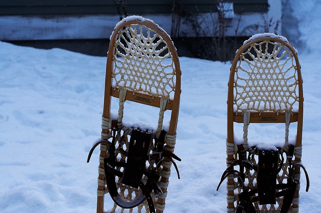 Snow_Shoes