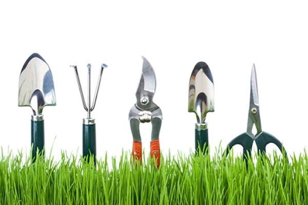 Gardening_Related_Tools