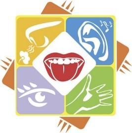 5-Senses-logo