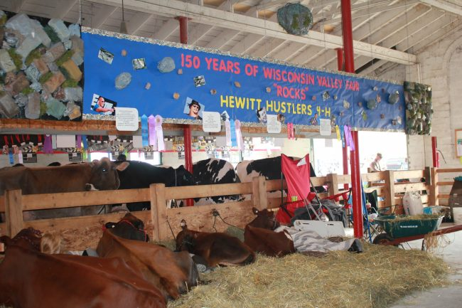 4-H Has Something 4-Everyone :: A Look at the 4-H Exhibits