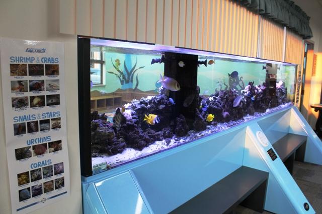 MCPL-aquarium