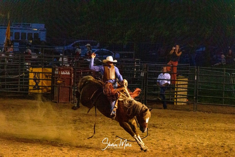 Rodeo - WI Valley Fair 2019