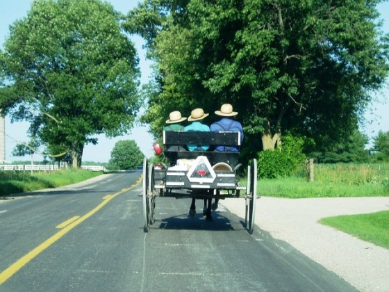 Amish carriage