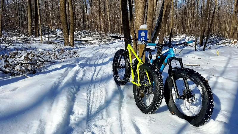 Fat Bikes on a trail at Big Eau Pleine County Park
