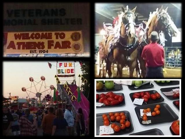 Athens Fair collage